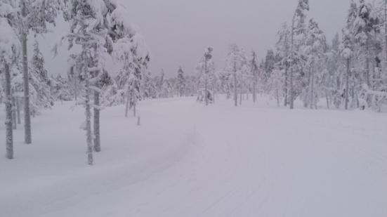 Hallstaberget Sollefteå