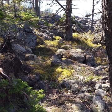 Rotsidan Natuurreservaat